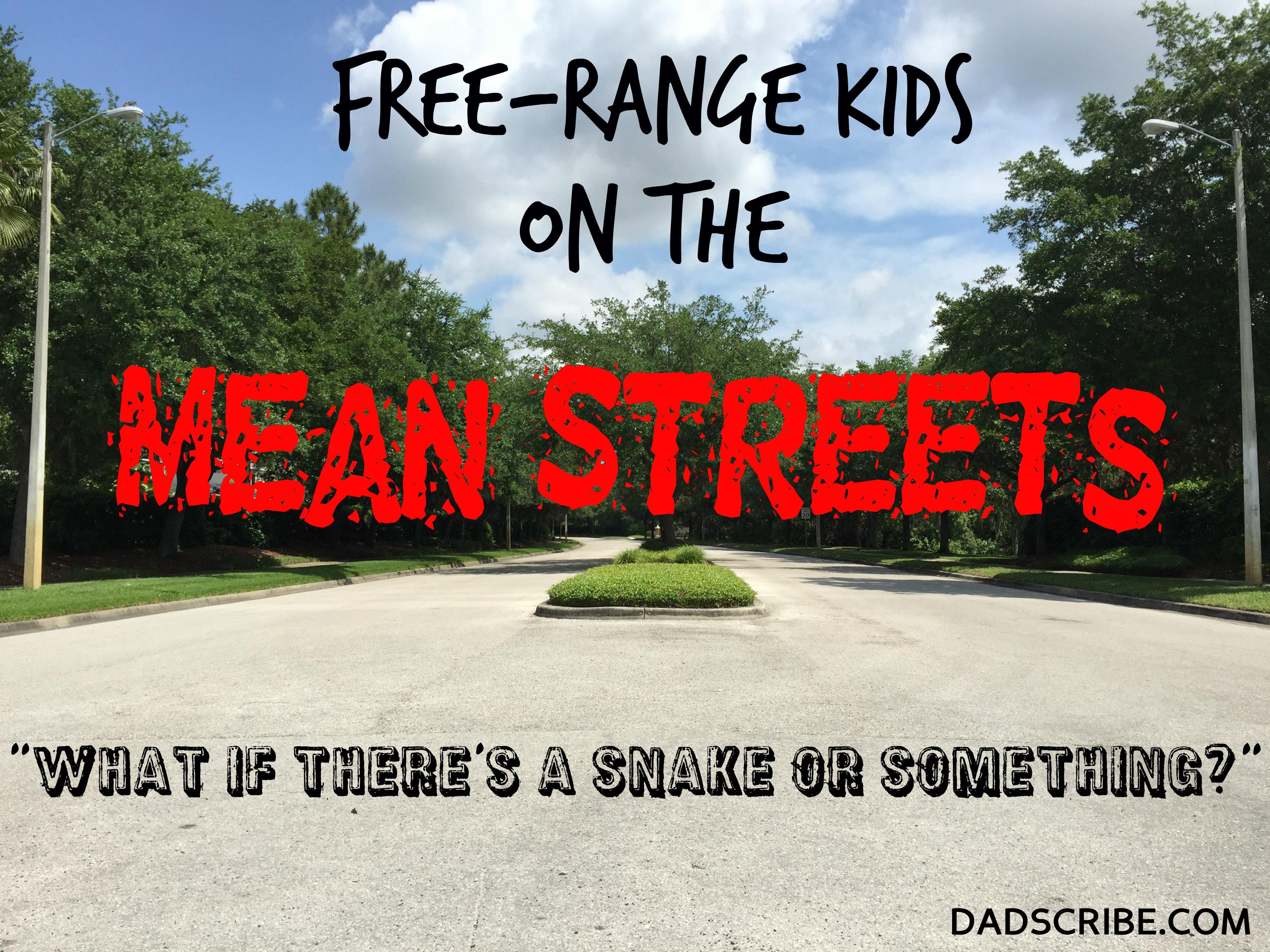 faq free range kids - HD3264×2448