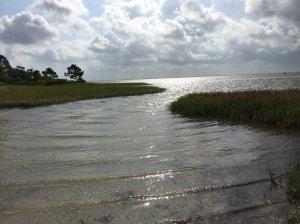 Visit Gulf County